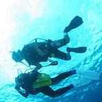 鹿児島の海の海中散歩 体験ダイビング