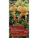 Der große BLV Pilzführer für unterwegs 1200 Arten 1000 Farbfotos