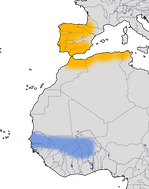 Karte zur Verbreitung des Iberienzilpzalp (Phylloscopus ibericus).