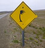 Der patagonische Wind ist gewaltig: Beim Pinkeln geht's waagrecht weg, Wind von hinten - versteht sich!