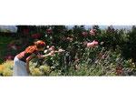 1981-2000. Private garden, Velletri, Roma, Italia