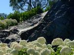 2014. Private garden, Panguipulli, Chile
