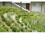 2006. Private garden, Zapallar, Chile