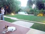 2013. Private garden Fregene, Roma, Italia