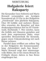 Sächsische Zeitung Juli 2013
