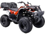 ATV BREAK PARTS