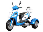 CLCIK TO SEE TRIKE AXEL PRICES