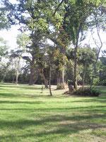 Le parc de Fontguitard