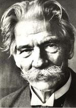 Unser Namensgeber Albert Schweitzer, Arzt und Musiker