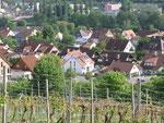 Kleinochsenfurt