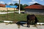 Gebräuchliche Strassenschilder in Bulgarien