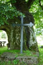 Eisernes Kreuz an der Linde (Foto: S. Funk)