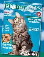 Pfotentipps Ausgabe 3 zum Download