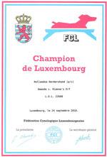 Championtitel