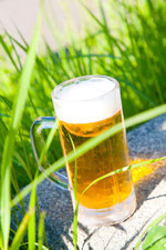 緑とビール1