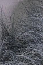 huile sur bois 41,5 x 29,5  2007