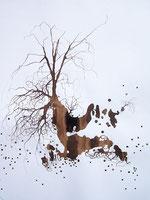 LAST n°63 brou de noix et acrylique sur papier 50 x 65  2009