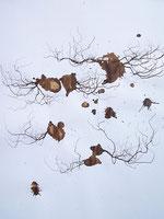 LAST n°74 brou de noix et sciure sur papier 50 x 65  2009