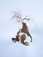 LAST n°59 brou de noix et sciure sur papier 50 x 65  2009