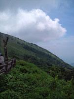 07.16 滋賀県伊吹山。9合目駐車場から頂上までは遊歩道を40分くらいとの事。犬連れゆえ断念しましたが山の空気をいっぱい吸って満足。