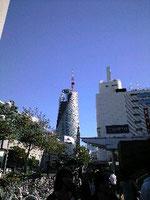 建設中のHALタワー