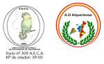 socio nº 309 A.E.C.A.  Nº criador 3P-50