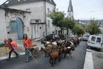Les chèvres toujours devant