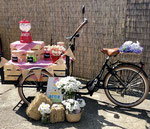 BICI CANDY BAR