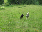 Xena und Yukon