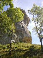 Au pied de la falaise, depuis le chemin d'accès à la grotte