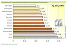 CO2-Ausstoß von Brennstoffen