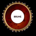 Bière bio brune de Metz