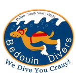 Bedouin Divers Logo Dahab in Egypt
