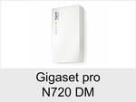 Gigaset Pro/Basis/N720 DM