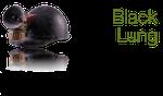Utah Black Lung