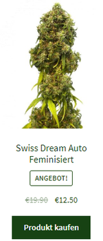Swiss Dream Auto Feminisiert
