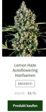 lemon haze autoflowering hanfsamen