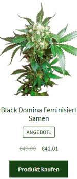 Black Domian feminisiert