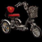 Van Raam Easy Go Scooter Spezialdreirad