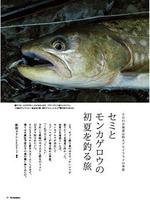 『フライロッダーズ』誌(地球丸刊)2012年7月号「セミとモンカゲロウの初夏を釣る旅」。写真と文。