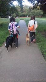 お友達と一緒にお散歩中!