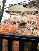 清水寺の紅葉