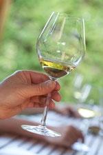 Verre de vin de Bourgogne blanc