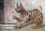 mosaïque Napolitaine chat romain
