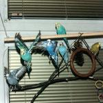 Mehrere Vögel animieren sich gegenseitig