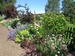 Tag der offenen Gartentür 2015 im Kreislehrgarten Lindenberg