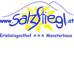 www.salztiegl.at