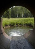Abwasser Fluss