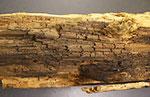 褐色腐朽菌により腐朽した木材