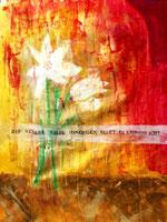 Arbeit von Vera M. - Lilien